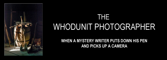 Whodunit Photographer